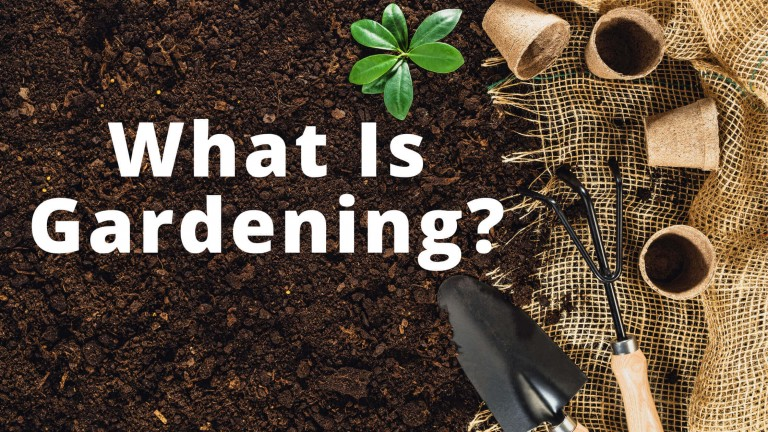 What Is Gardening?