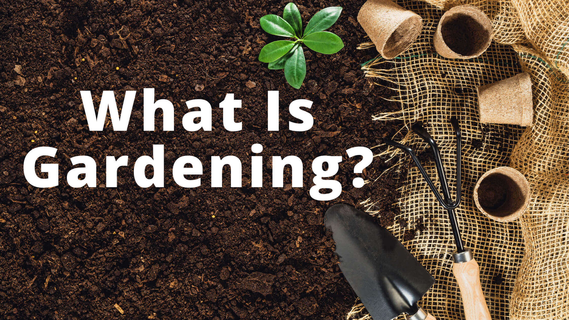 What Is Gardening